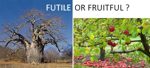 futile or fruitful