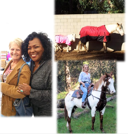 horse story Karen